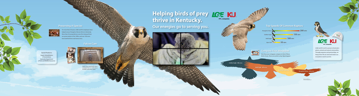 LG&E Falcon Exhibit at Kentucky Kingdom
