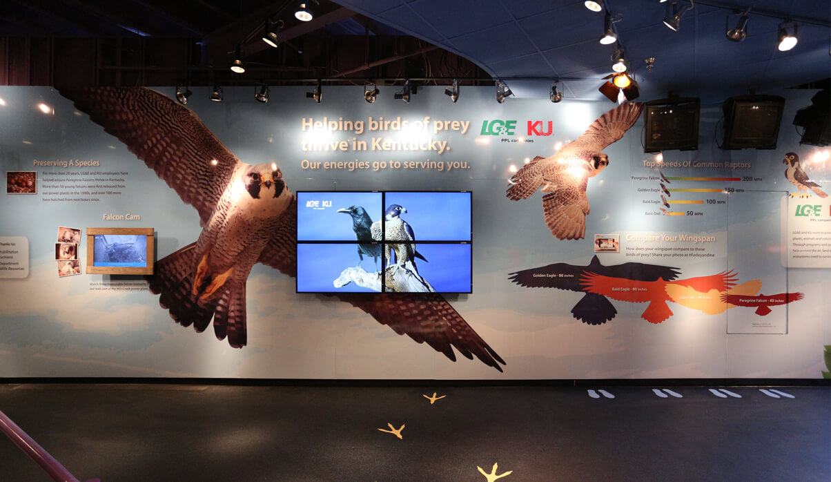 LG&E Falcon Exhibit at Kentucky Kingdom