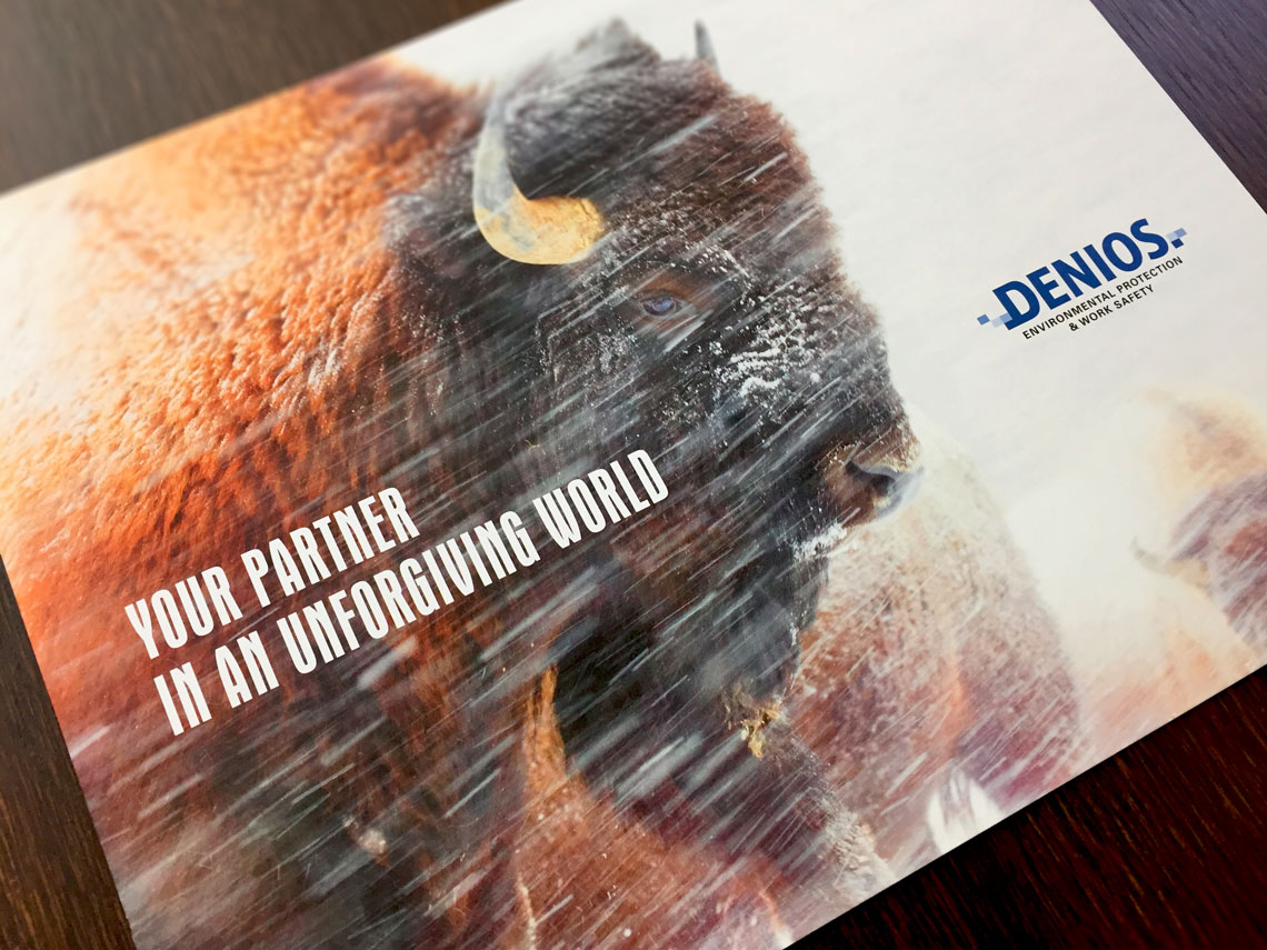 DENIOS Brochure